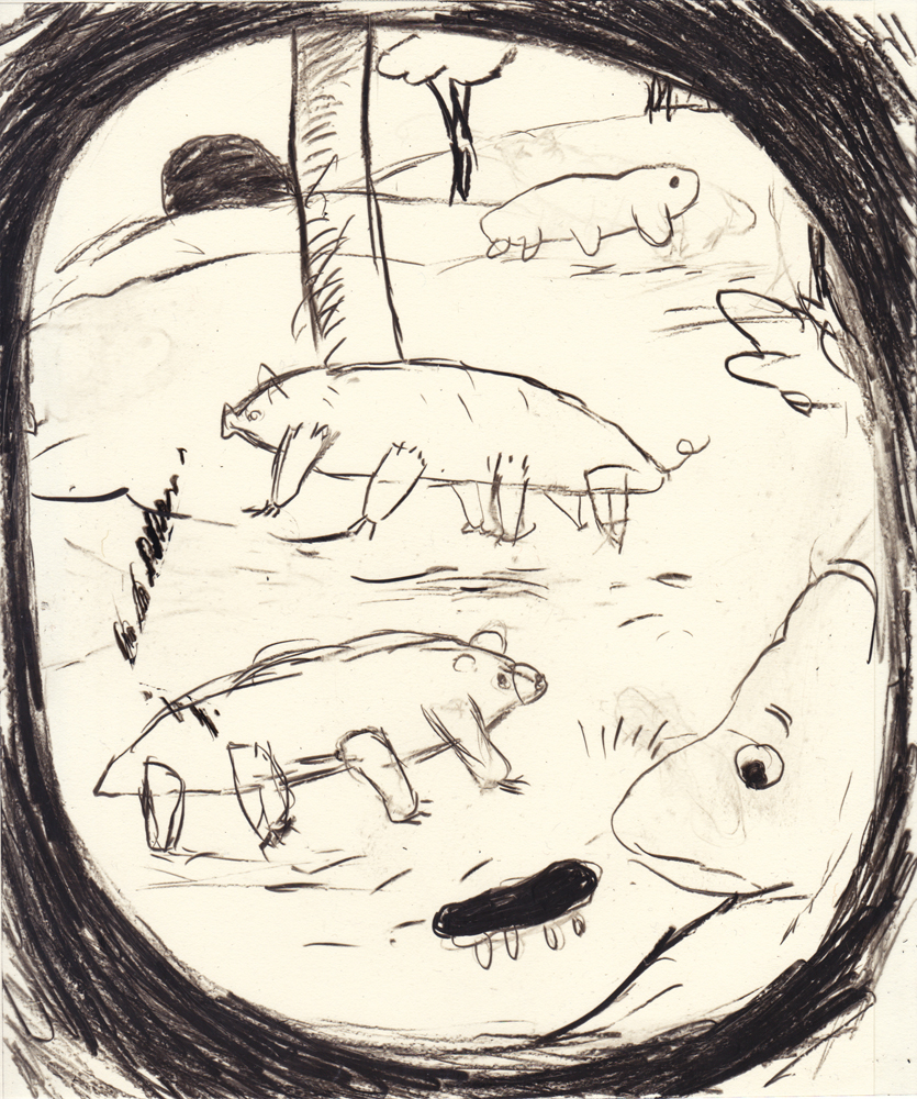 tardigrade_06_small